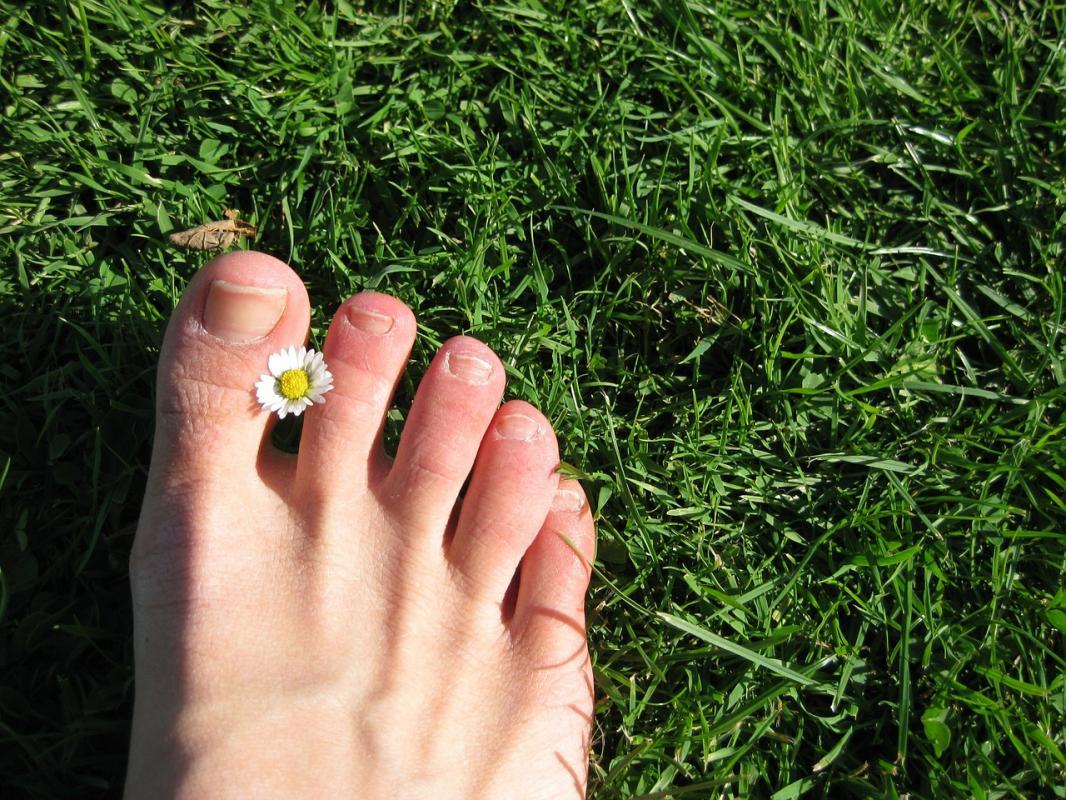 perfetta guarigione unghia dell'alluce del piede